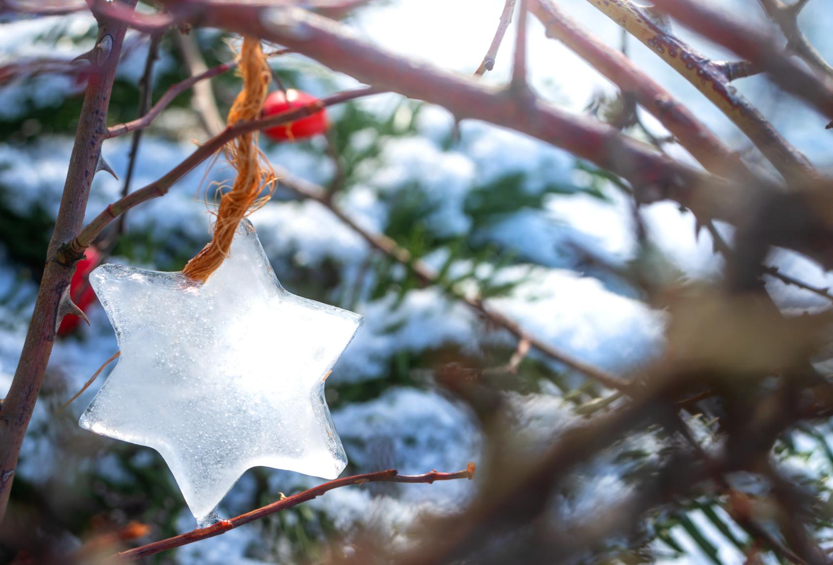 Kalverkamp wünscht frohe Weihnachten